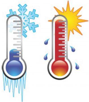 TEMPERATURA ha de cultivarse en un clima de temperaturas cálidas, no soportando las heladas y viéndose afectada por debajo de los 5ºC.
