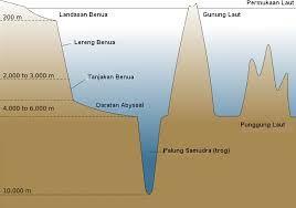 Punggung laut atau punggung bukit lautan, adalah bentukan di dasar laut yang mirip tanggul raksasa