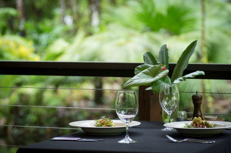 Enjoy your meal in a tropical paradise at Daintree EcoLodge