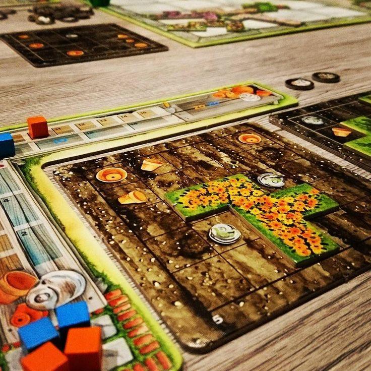 #cottagegarden von #spielwiese und @pegasusspiele ist ein schöner Nachfolger von #patchwork #brettspiele #brettspiel #fb #uwerosenberg