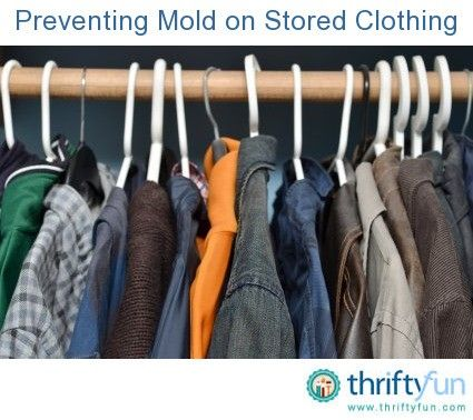 how to clean moldy clothes