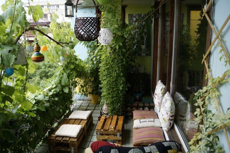 terrazas decoradas con plantas verdes
