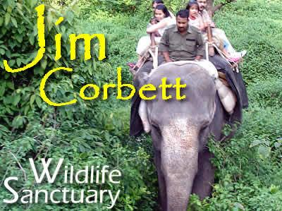https://flic.kr/p/Eb5ruS | Resorts in JIM Corbett National park Book now | Jim Corbett National Park, which is a part of the larger Corbett Tiger Reserve, a Project Tiger Reserve lies in the Nainital district of Uttarakhand Best Offers for Corporate tours Company Groups Call-08130781111/08826291111 corbettresort.in/