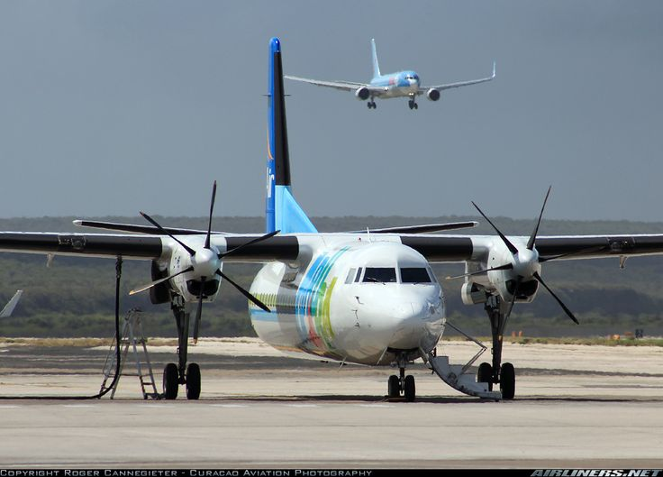Fokker 50 - Insel Air Aruba   Aviation Photo #2087945   Airliners.net