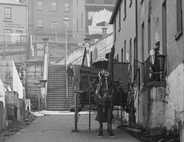 Brown Bear Lane at The Rocks of Sydney (year unknown). The steps in the background lead up to where BB Lane becomes Little Essex St and is crossed by Harrington St. •State Library of NSW•
