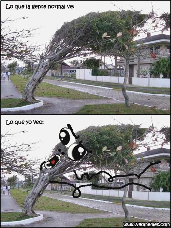 ッ Disfruta sin parar con fotos de risa cristiano ronaldo, c memset, imagenes divertidas con frases para reir, chiste huevo y memes en español anime. ➛➛ http://www.diverint.com/humor-grafico-adultos-fotos-bmw-aparco-da-gana/