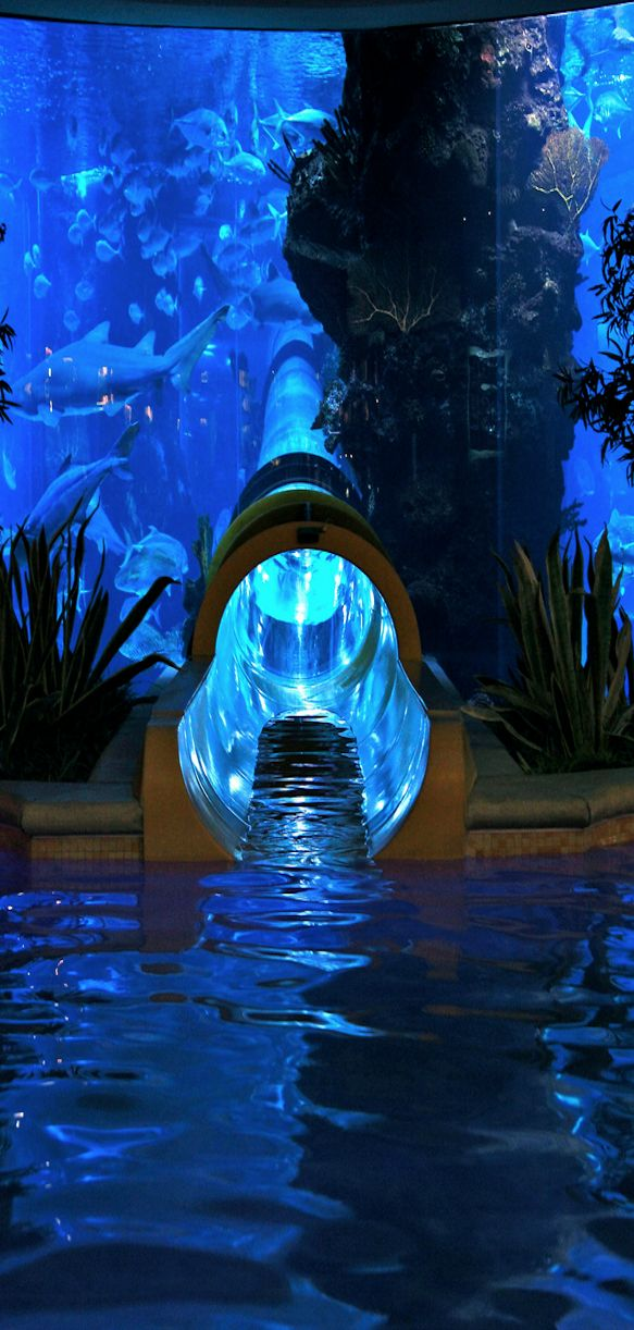 Golden Nugget Pool Slide surrounded by shark tank. I have been in it. It is mint - Las Vegas - poolandspa.com