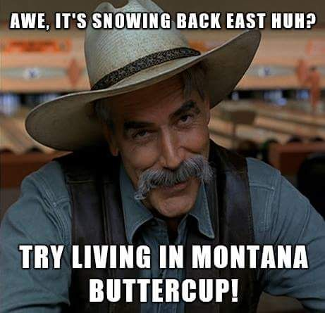 7418b756bd02da0eb00cff68939c23a6 montana cowgirl funny things 108 best for fun ski memes any ski memes images on pinterest