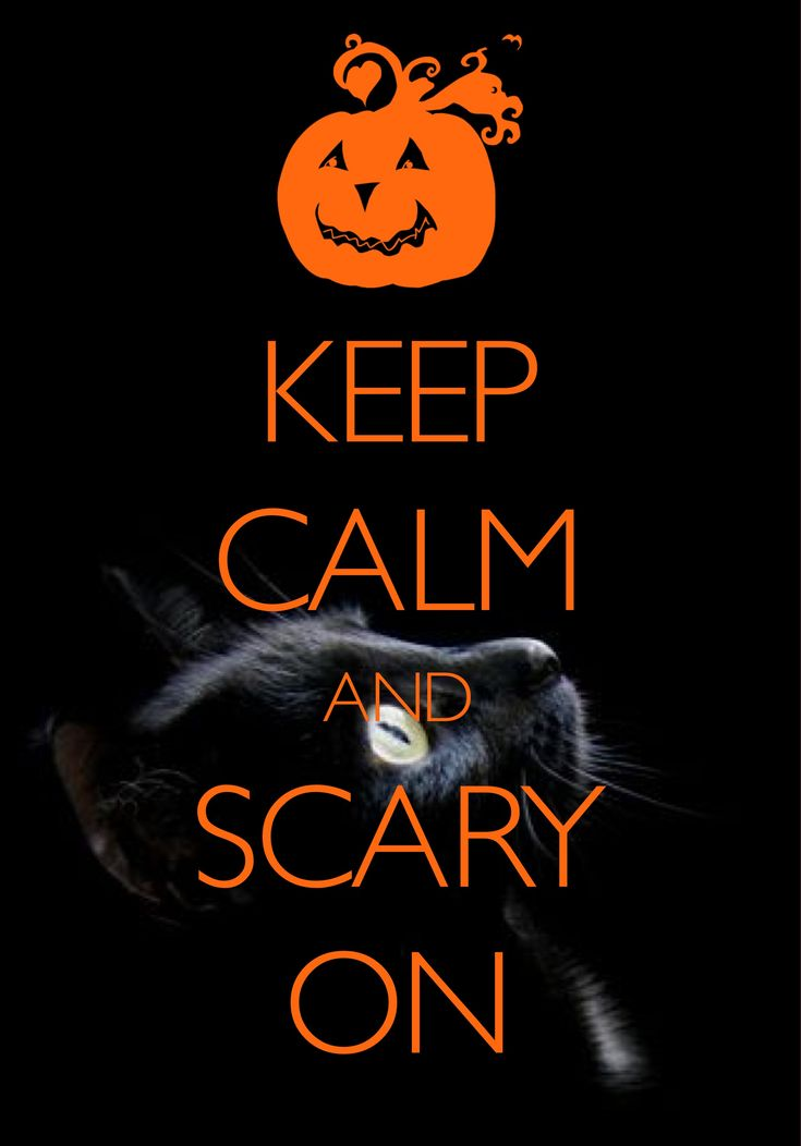keep calm and scary on / created with Keep Calm and Carry On for iOS #keepcalm #Halloween #blackcat