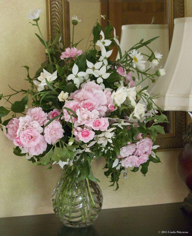 Dogwood, daisies, roses, 2014