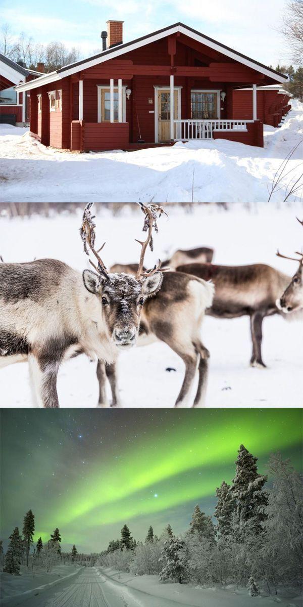 Auf geht's ins Land der Elche, Lappland in Schweden im Winter - Angebot via Urlaubspiraten.de