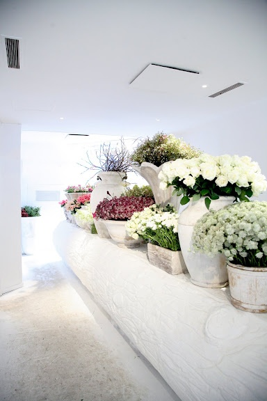 x White flower shop