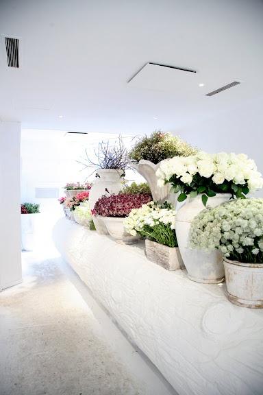x White flower shop