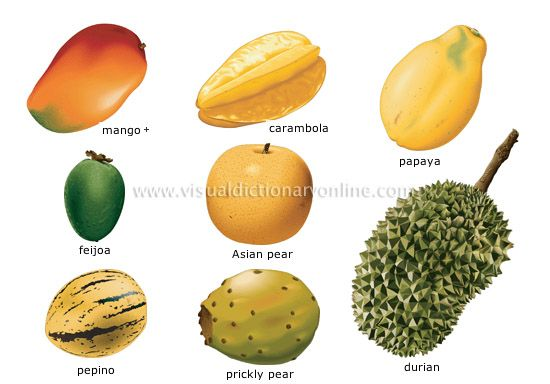 Exotic Fruits and Their Names | ... fruits, window sills ...