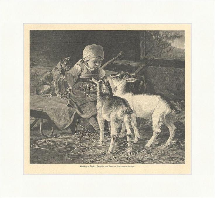 Ländliches Idyll Kinder Ziegen Zicklein Hunde Stall Schubkarre Holzstich E 3534 | eBay