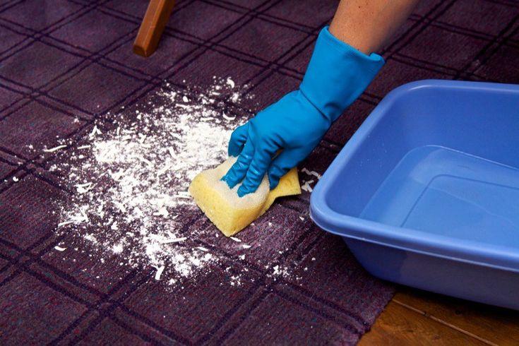 Come-pulire-i-tappeti