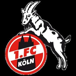 Funny German Bundesliga Logo