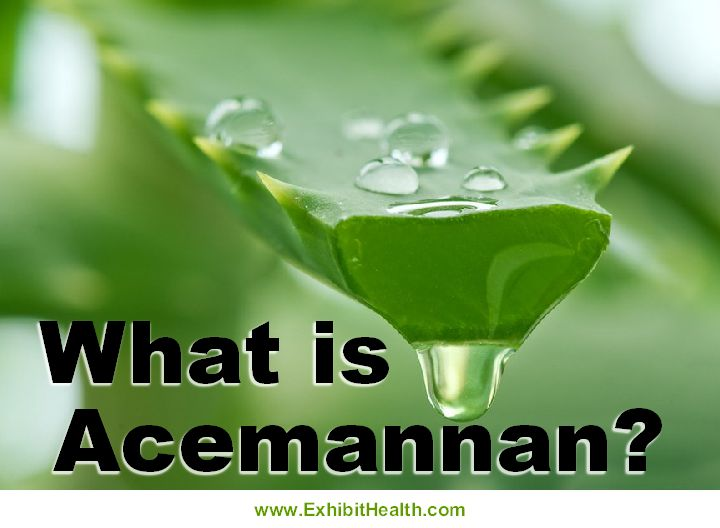 If you have ever experienced the amazing health and healing benefits of Aloe Vera, you should become acquainted with a very important constituent of the Aloe Vera plant - Acemannan.