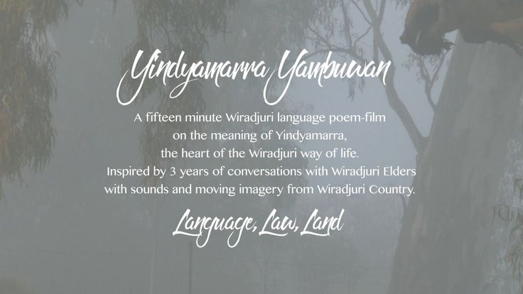 Yindyamarra Yambuwan - A film in Wiradjuri Language