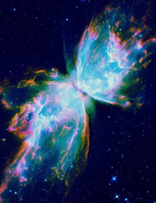 Yes, I'm a space junkie! Lol This is the Butterfly Nebula (NGC 6302), a bipolar…