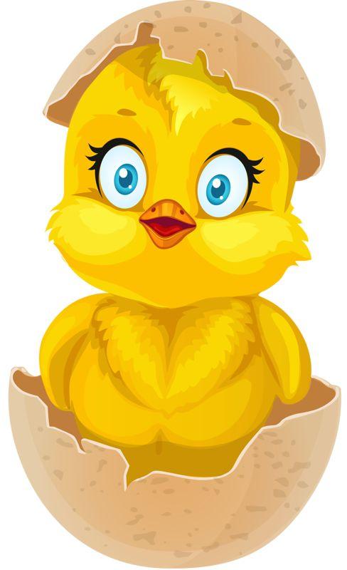 Chicken egg hatching clip art