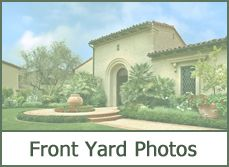 Front Yard Landscaping Photos