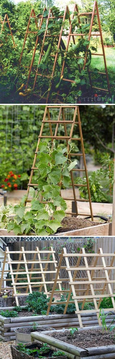 Sturdy A-frame Trellis Panels That Can be Folded Up When Not in Use #diytrellis #gardeningtips #gardentrellis