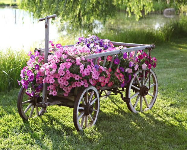 This is beautiful...love that wagon!!!: Goats, Gardens Ideas, Flowers Gardens, Pink Flowers, Front Yard, Old Wagon, Planters, Petunias, Flowers Carts
