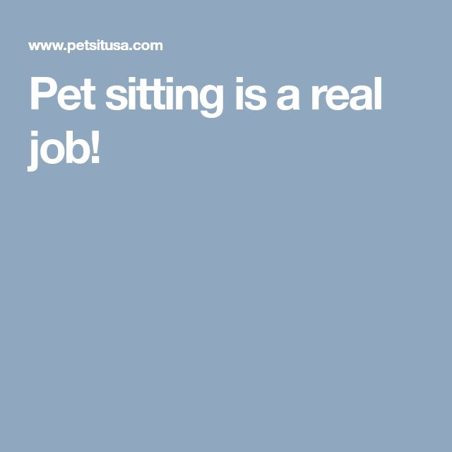 Pet sitting is a real job!