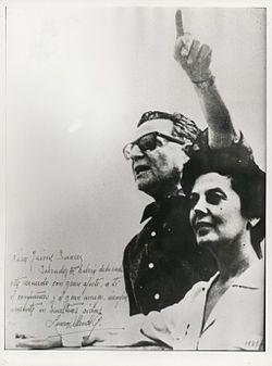 Laura Allende Gossens - Wikipedia, la enciclopedia libre
