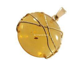 10 best amber fossil pendants in gold images on pinterest amber authentic amber fossil pendant mozeypictures Gallery