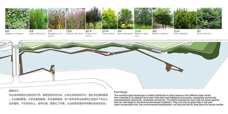Waterfront_Park_of_Aiyi_River-by-BLVD_International-23 « Landscape Architecture Works | Landezine