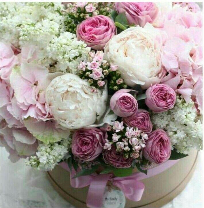 красивые картинки с днем рождения с цветами пионами общепринятым понятиям, серийный