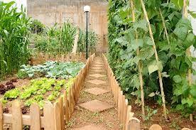 sebe para jardim - Pesquisa do Google