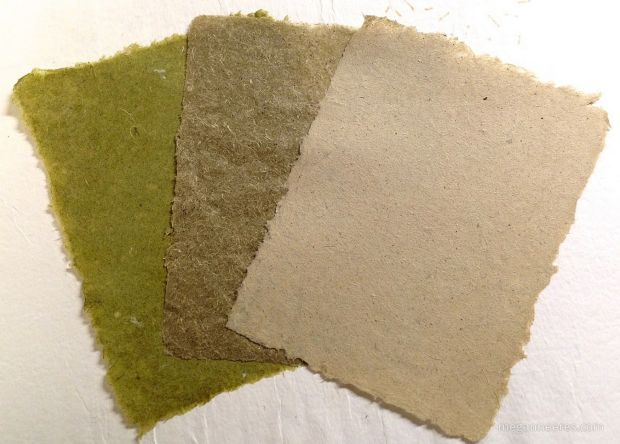 Making Paper from Invasive Plants http://www.my-garden-school.com/10-flowers-to-grow-with-vegetables/