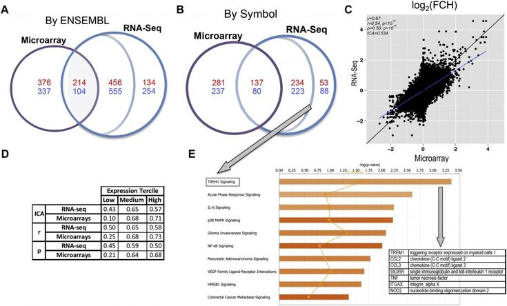 Genomic profiling of lesional and nonlesional skin of patients with atopic dermatitis (AD) using microarrays has led to increased understanding of AD and identification of novel therapeutic targets. However, the limitations of microarrays might decrease detection of AD genes. These limitations might be lessened with next-generation RNA sequencing (RNA-seq).  RNA-seq and microarrays were performed to identify differentially expressed genes in lesional versus nonlesional skin from 18 patients…