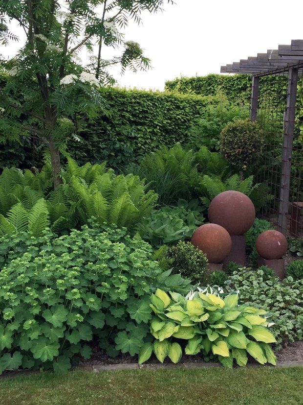 A Perennial Shade Combination Of Hosta,fern,and Ladyu0027s Mantle Set With  Terra Cotta Garden Art.   Back Yard?