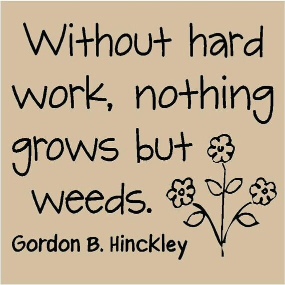 Hard Work Quotes Pinterest: Quotes/funny/e-cards