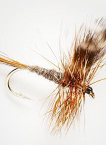 Fly Fishing Flies   Popular Fly Patterns   Fly Fishing -- Orvis Flies -- Orvis