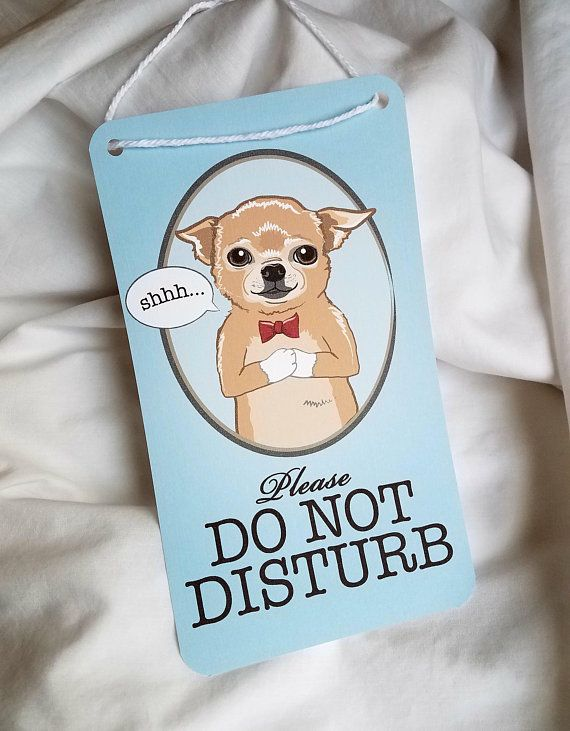 Chihuahua Do Not Disturb Sign Chihuahua Training Your Dog