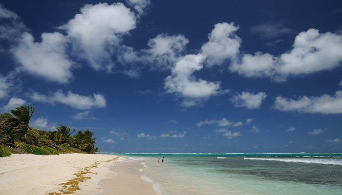 Best Beaches in Texas | Tripping.com