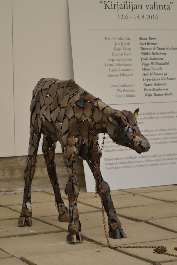"""""""Tolokku"""" - vasikka / calf 05/2016 Scrap metal sculpture"""