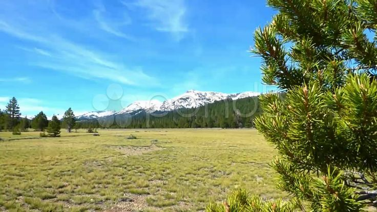 Forest Meadow Snow Capped Mountain - Stock Footage | by Iam2012escapee