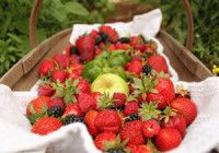 Letní jahodo-ostružino-malinové smoothie recept