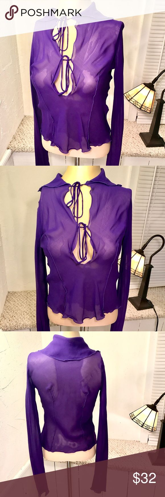 Massimo Danieli purple long sleeve top size 42 Massimo Danieli purple sheer long sleeve blouse. Shawl type collar. Double tie accents creating keyhole effect. 100% silk. Made in Italy. Size 42 / M Massimo Danieli Tops