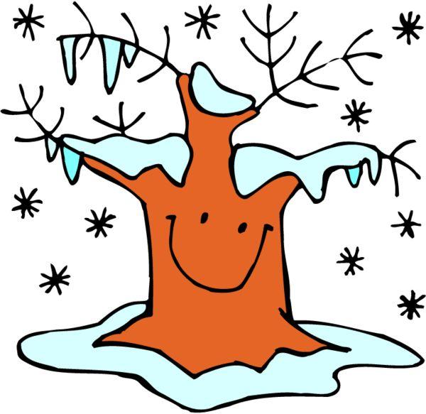 strom zima