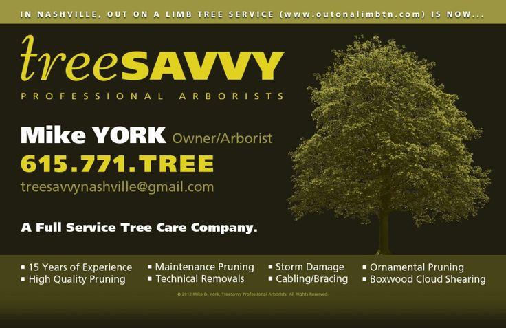Our Roots - Tree Savvy   Nashville, TENN Tree Tree Experts