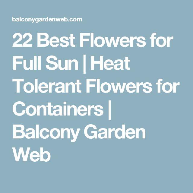 M s de 25 ideas incre bles sobre sun garden en pinterest sun loving plants full sun perennial - Flowers that love full sun and heat ...