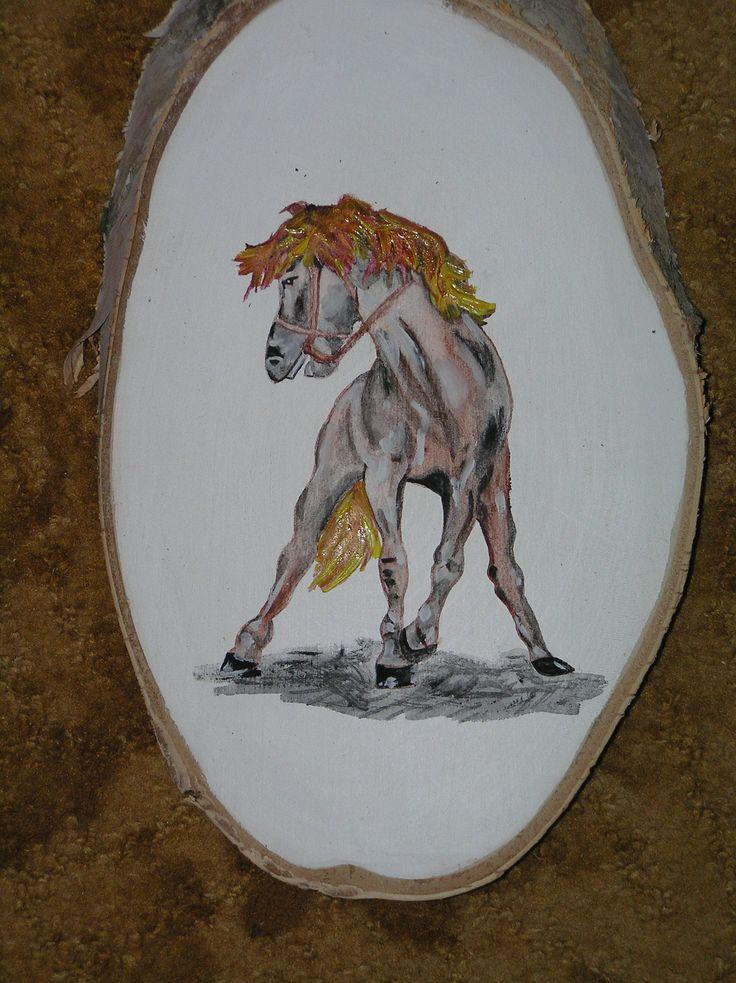 Kůň E
