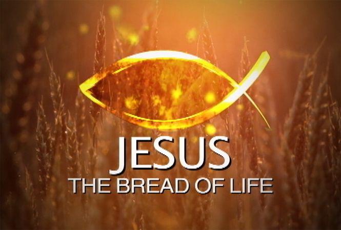 the_bread_of_life El Sembrador canal Catolico en ingles 4:30-5:00pm. Con el hermano en Cristo Joe Borba